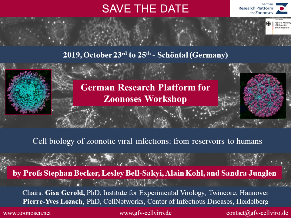 Workshop Cell Biology of Viral Infections of the Society for Virology (GfV)